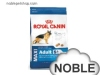 Royal Canin 大型老犬 (5岁以上) SGR26 15kg