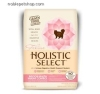 Holistic Select Grain Free Indoor Health/weight control cat dyry food Sample