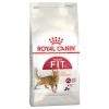 Royal Canin Feline Nutrition Adult (Fit32)