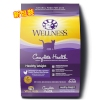 Wellness Healthy Weight for Cats  6lb